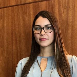 FAKE NEWS, LIBERDADE E DEMOCRACIA EM TEMPOS DE PANDEMIA